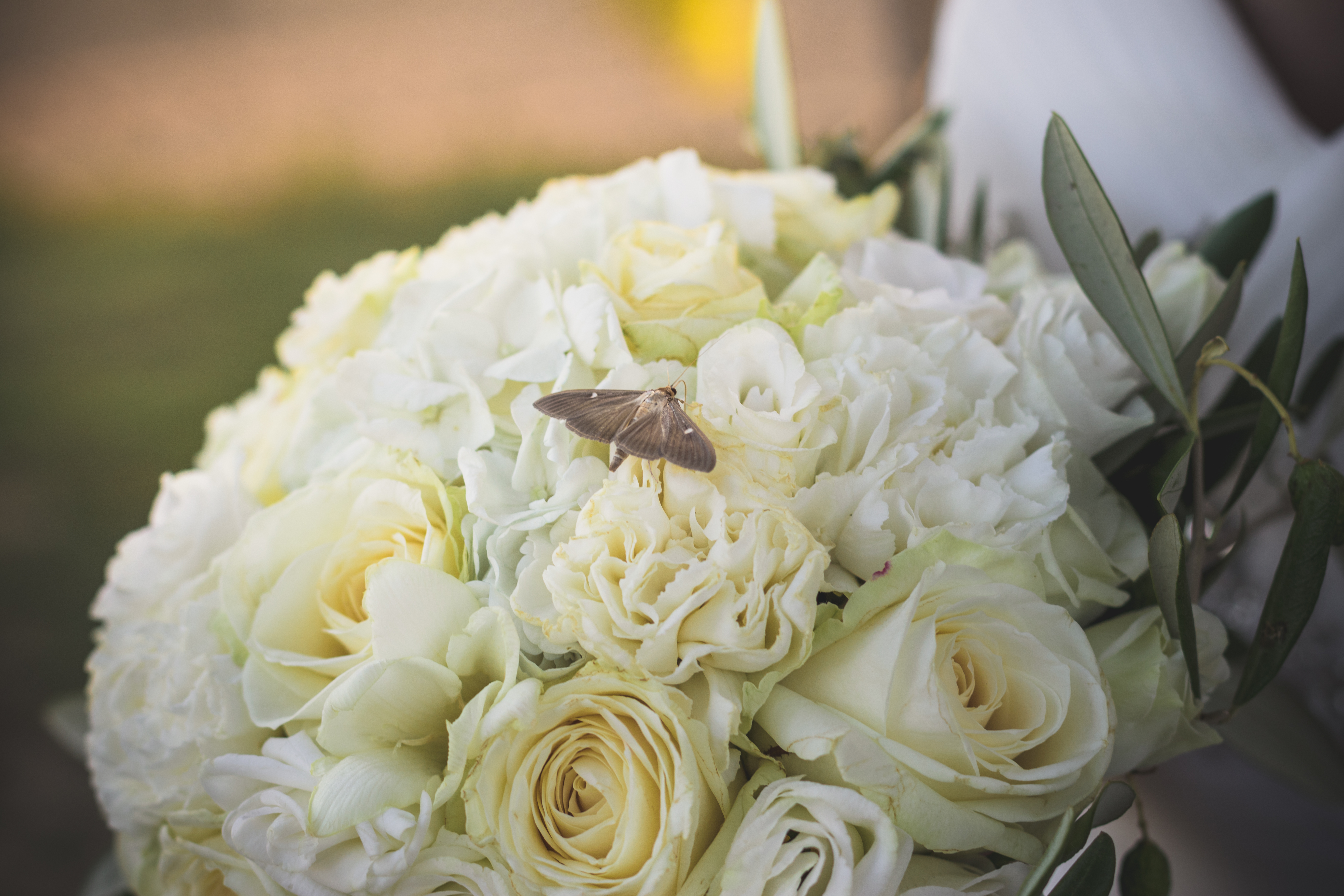 Pourquoi faire appel à un Wedding Planner